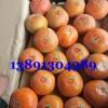 陕西柿子杨丰柿子价格大荔次郎柿子产地|渭南大荔脆柿子种植基地